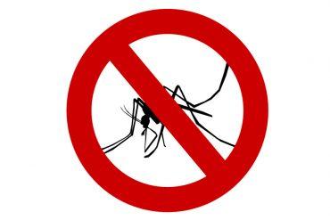 Estate… come difendersi dalle zanzare